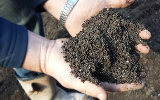 grade-2-top-soil
